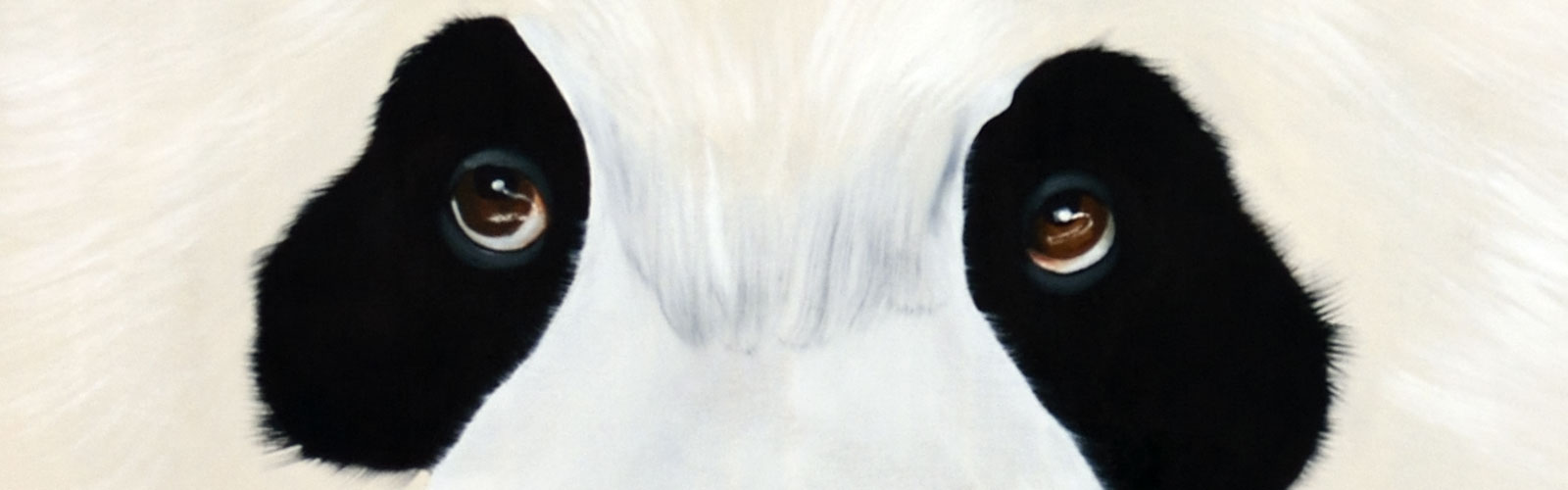 Closeup-Panda animal-painting Thierry Bisch painter animals painting art decoration hotel design interior luxury nature biodiversity conservation