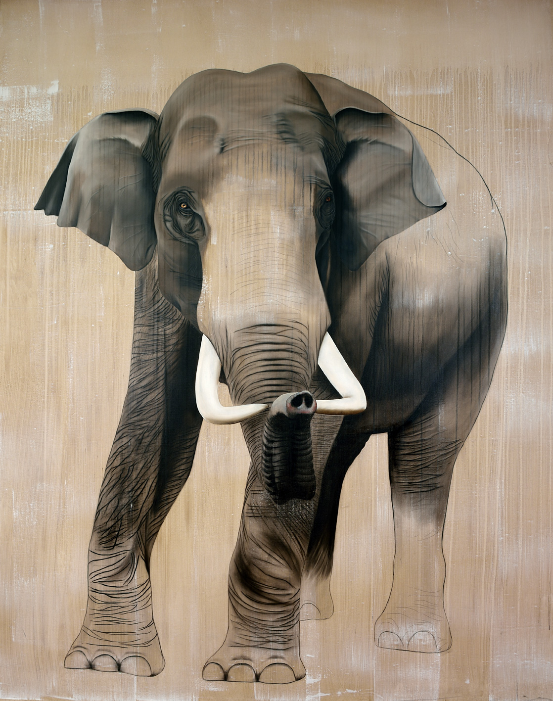 ELEPHAS-MAXIMUS divers Thierry Bisch Contemporary painter animals painting art decoration nature biodiversity conservation