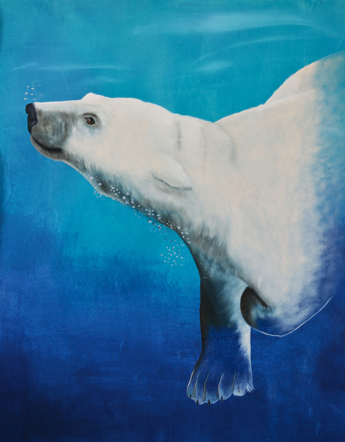 URSUS-MARITIMUS--4 divers Thierry Bisch painter animals painting art decoration hotel design interior luxury nature biodiversity conservation