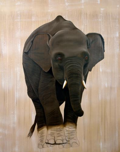 elephas maximus baby elephant asian delete threatened endangered extinction Thierry Bisch Contemporary painter animals painting art decoration nature biodiversity conservation